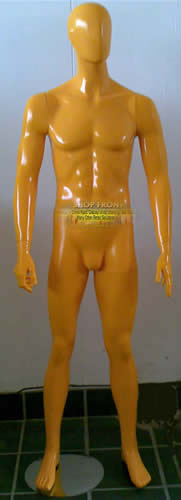 Color Male Mannequin